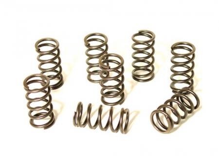 Valve springs - single & reinforced - Scat
