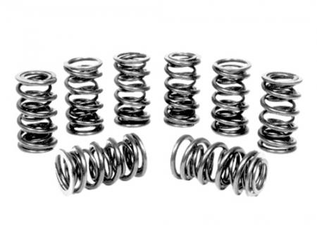 Valve springs - double - Scat